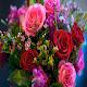 Wallpaper Flowers FULL HD APK