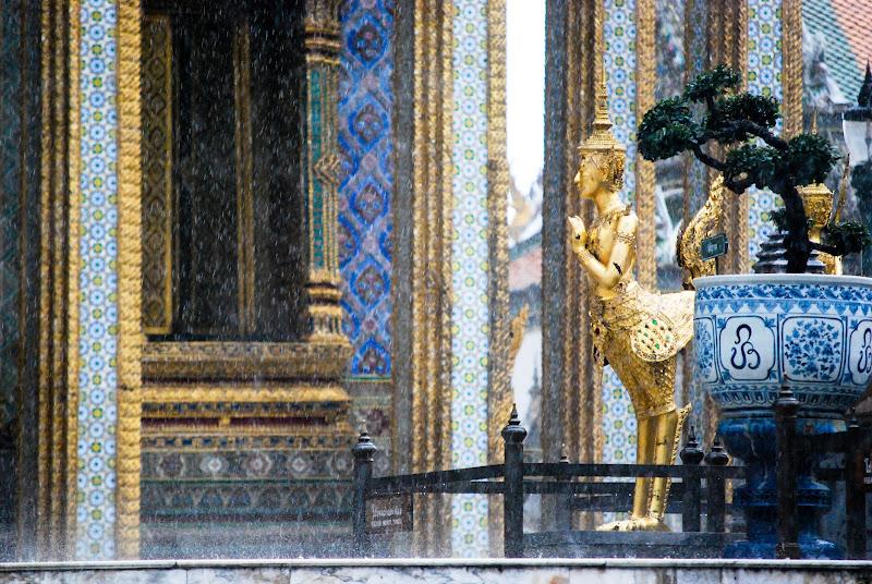 Thai Rain di danilomateraphotography