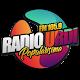 Radio URDI APK