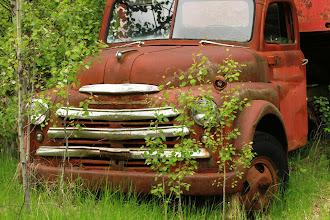 Photo: Golden - alter Dodge