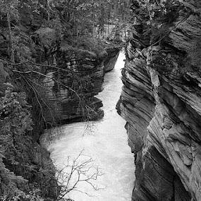 Athabasca Falls by Pam Blackstone - Black & White Landscapes ( gorge, waterfall, canyon, rockies, rocks, river )