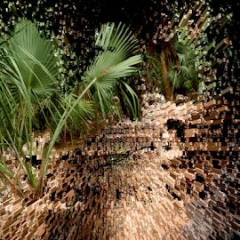 Brown Inferno by Edward Gold - Digital Art Things ( digital photography, extruded background, green color, green plant, brown colors, digital art,  )