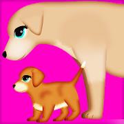 جراحة الحمل الكلب 2