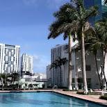 pool & a corona in Miami, Florida, United States