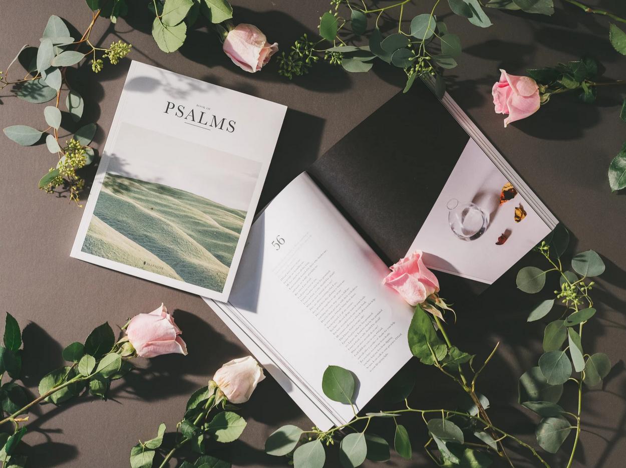 Alabaster Co | Gift Brand