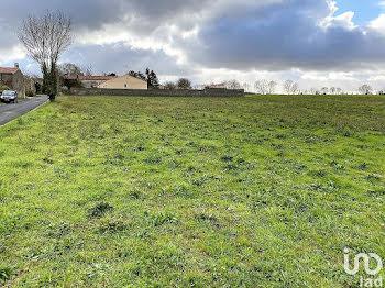 terrain à Bernay-Saint-Martin (17)