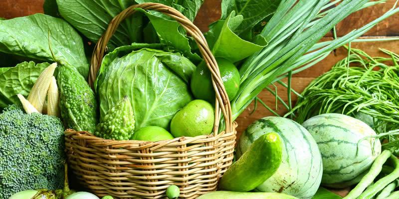 Benefits of Using <span class='ent _Organic_Fertilizers'><span class='ent _Organic_Fertilizers'><span class='ent _Organic_Fertilizers'><span class='ent _Organic_Fertilizer'><span class='ent _Organic_Fertilizer'><span class='ent _Organic_Fertilizer'><span class='ent _Organic_Fertilizer'><span class='ent _Organic_Fertilizer'><span class='ent _Organic_Fertilizer'><span class='ent _Organic_Fertilizer'><span class='ent _Organic_Fertilizer'><span class='ent _Organic_Fertilizer'>Organic Fertilizer</span></span></span></span></span></span></span></span></span>s</span></span></span> and Organic Herbicides
