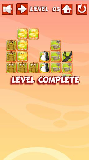 Puzzle of Birds- Logic Game