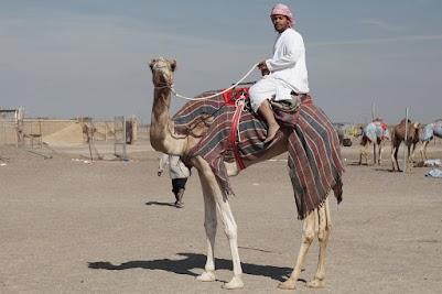 Said auf seinem Kamel
