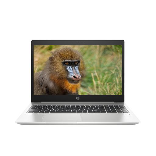 Máy tính xách tay/ Laptop HP ProBook 450 G6-6FG97PA (i5-8265U) (Bạc)