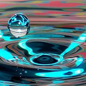 drops April 10 2012f1204.jpg