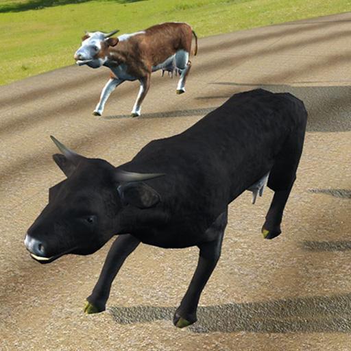 Crazy Cow Racing