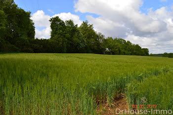 terrain à Mouthiers-sur-Boëme (16)