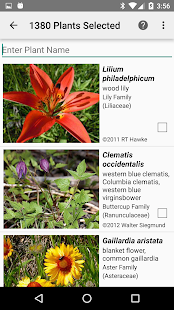 Alberta Wildflowers- screenshot thumbnail