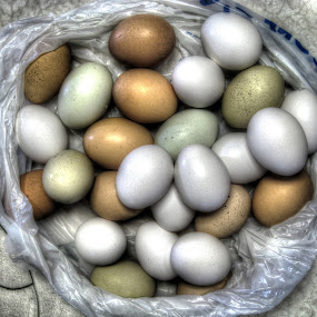 Farm Eggs by JoAnn Palmer - Food & Drink Ingredients ( eggs, colors, food, counter, colored eggs )