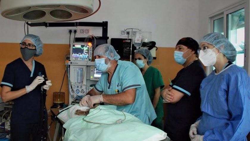 La sesión de realizar tareas de soporte en el quirófano cerrará la formación.