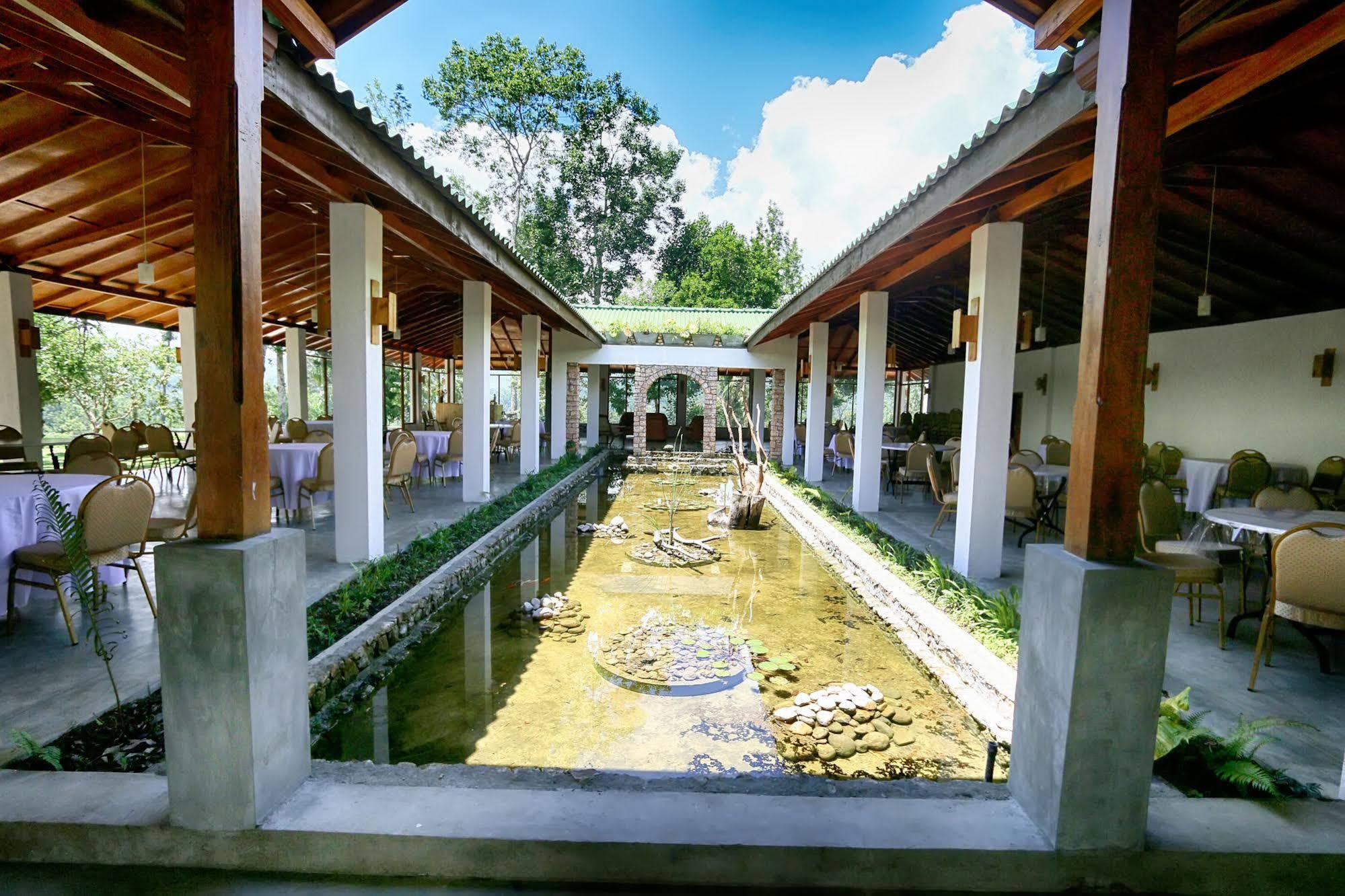 The Tea Tree Resort