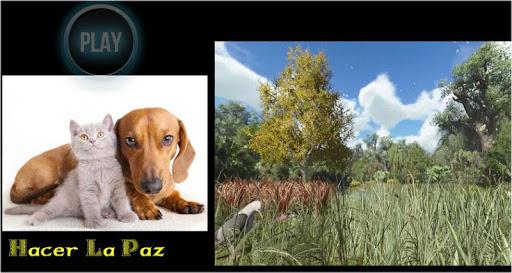 Hacer La Paz 1.0.0 screenshots 1