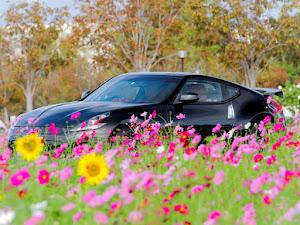 フェアレディZ Z34 2009年式 40th anniversaryのカスタム事例画像 ふーけもんさんの2020年10月15日00:49の投稿