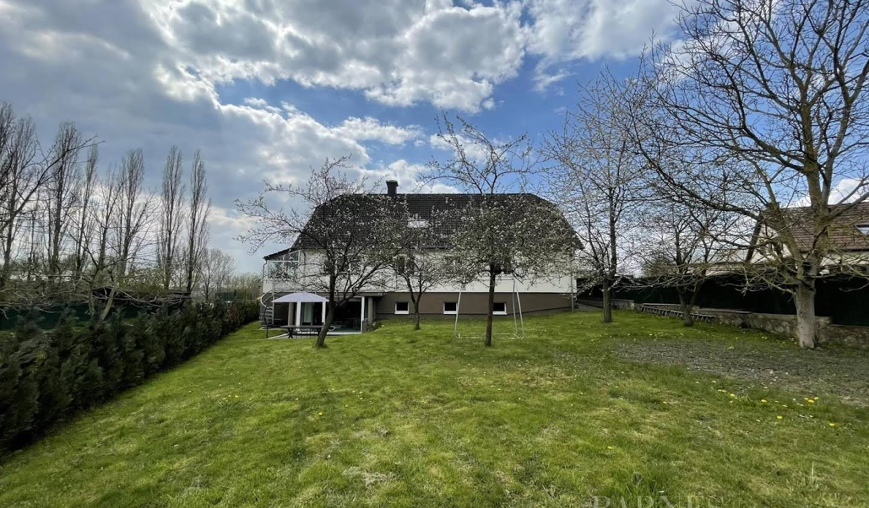 Villa avec terrasse Berchem