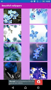 Flowers  wallpaper by Wallpix screenshot 7