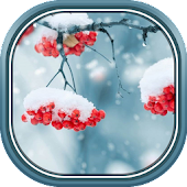 Beautiful Winter Live Wallpaper