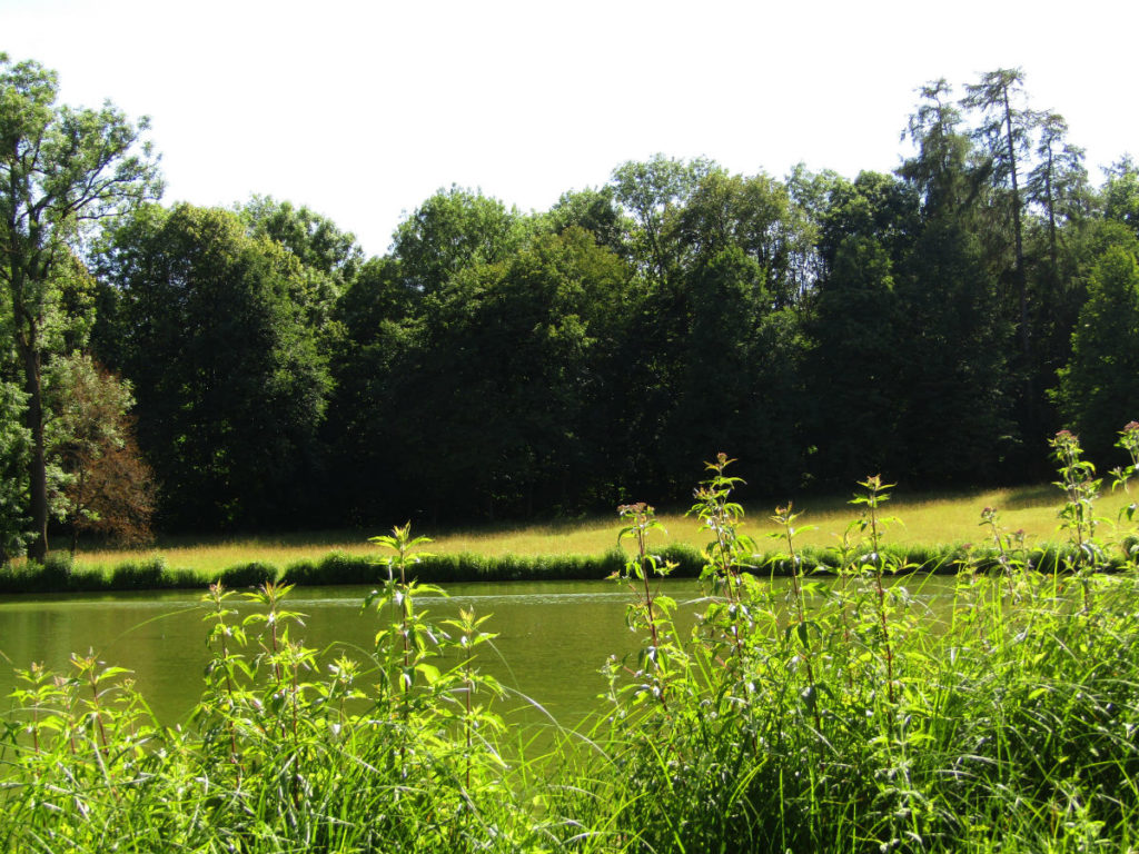 Walk in Nature in Munich healthy resolutions holidays