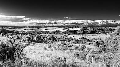 Photo: Filtered view... #monochrome #monochromephotography #landscape #landscapephotography