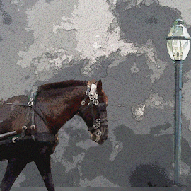 Workhorse2 by Edward Gold - Digital Art Animals ( workhorse, digital photography, lamp post, brown horse, grey background, digital art,  )