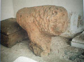 Photo: Fig. 25. Leone C da Faleri, peperino. Roma, Museo di Villa Giulia.