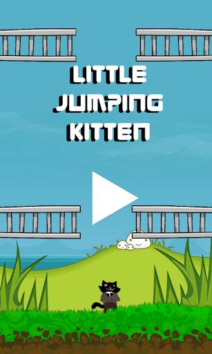 Little Jumping Kitten