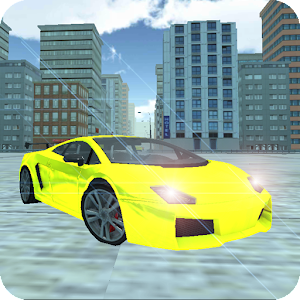 Real Car Driving Speed City Icon