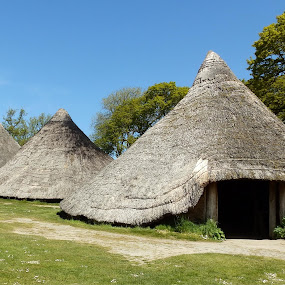 Castell Henllys by Cliff Oakley - Buildings & Architecture Homes ( archaeology, ironage, building, wales, hut )