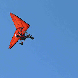 The Red Baron! by Gavin Plessis - Transportation Airplanes ( durban aviation comoany, aircraft, flying, microlight, north beach )
