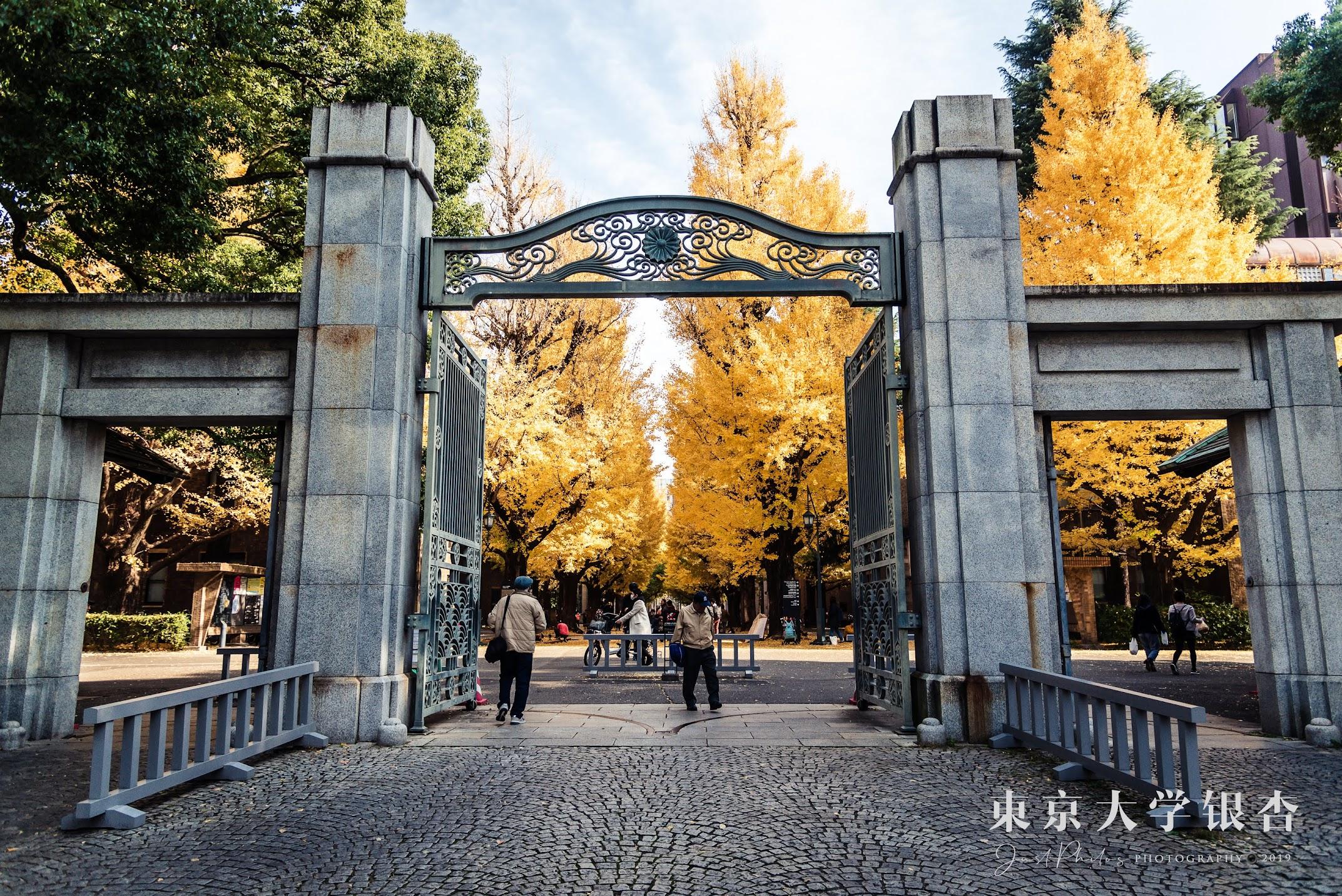 東京大學本鄉校區的校門也非常有特色,會讓人想停下腳步拍照的地方。