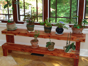 Photo: Red cedar plant stand in it's new home!