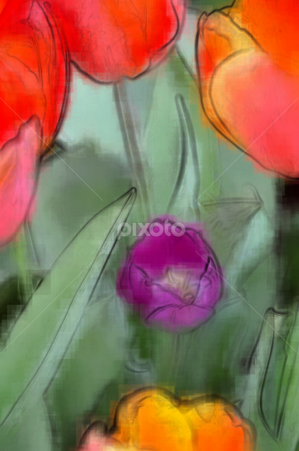 Tulips by Jax Welborn - Abstract Light Painting