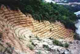 Photo: CHN-QU17  China - a quarry in Zhenzen, Guangdong Province under vetiver rehabilitation
