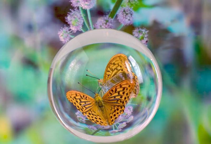 La sfera di cristallo di Marlak