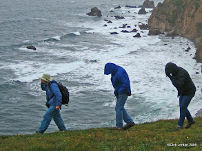 Photo: Into The Wind, Chimney Rock Trail, Point Reyes National Seashore, California
