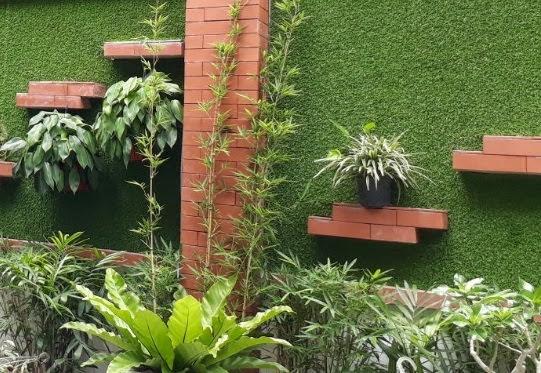 Sân vườn trang trí bằng Cỏ sân vườn rất đẹp mắt sắc nét