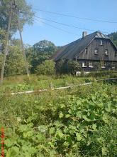Photo: widok domu jeszcze ze starym dachem od strony ogrodu, 2010