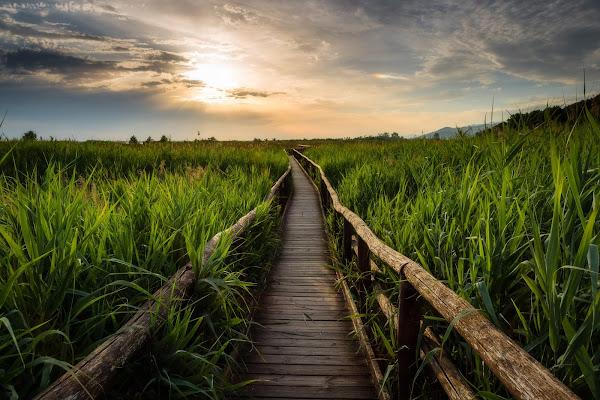 La via del tramonto di Nico Angeli Photography