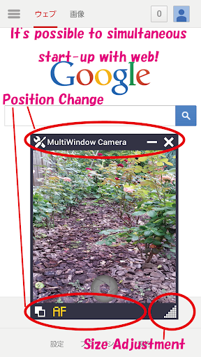 Multi Window Camera