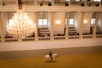 Photo: Ponies!