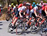 L'UAE Emirates choisit Jasper Philipsen comme leader pour le Tour du Benelux