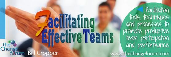 Facilitating Effective Teams - Registration