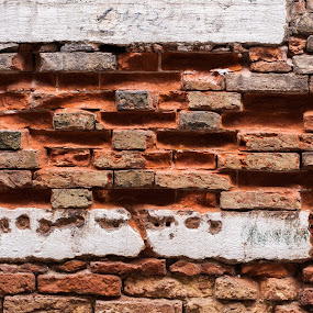 Brick wall by Adrijan Pregelj - Abstract Patterns ( orange, old, brick, white, sotone, wall )