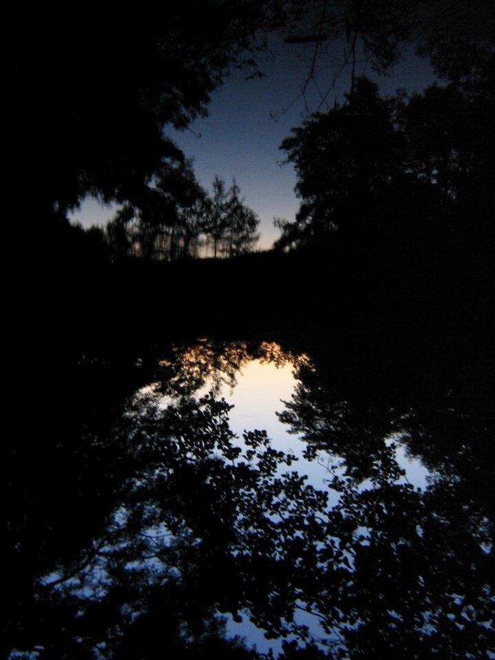 riflesso notturno di irlandese