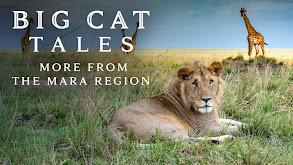 Big Cat Tales: More From the Mara Region thumbnail